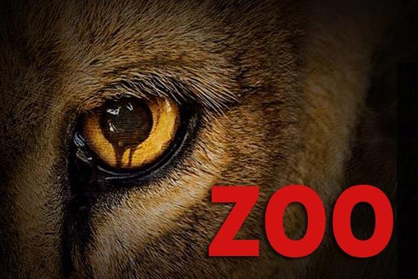 zoo série